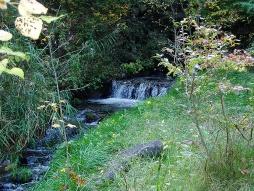 敷地内を流れる川